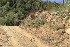 Ahmetler Kırsalına Keklik Bırakıldı